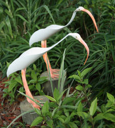 --RETIRED--Ibis Bird Sculpture